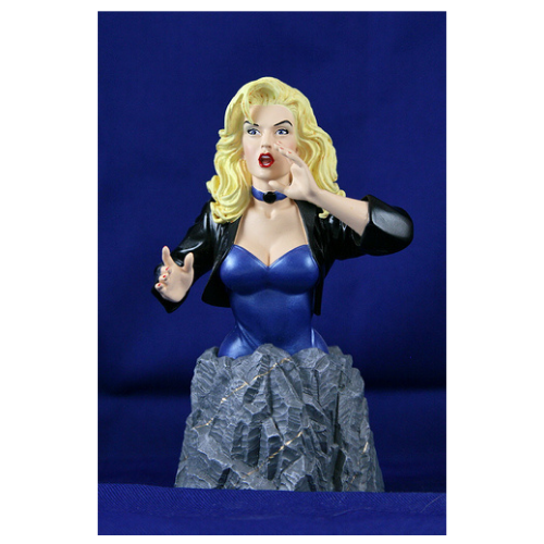 WOMEN OF THE DC UNIVERSE BLACK CANARY BUST 1